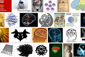 Relevance and Application of Physiology in Different Fields