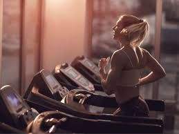 The Role of Exercise, Workout, and Training in the Human Body